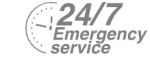 24/7 Emergency Service Pest Control in Bayswater, W2. Call Now! 020 8166 9746