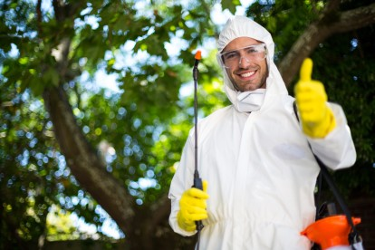 Pest Control in Bayswater, W2. Call Now 020 8166 9746
